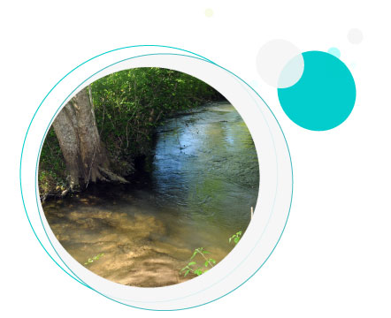 rivière nauze dordogne