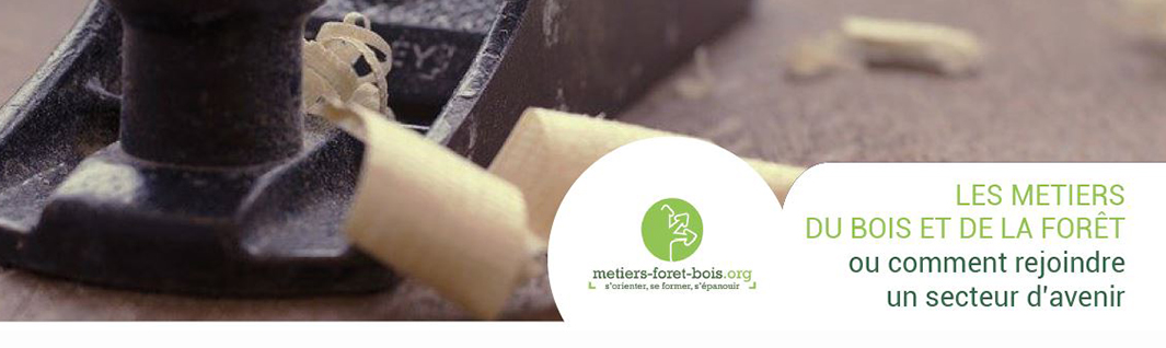 metiers foret bois